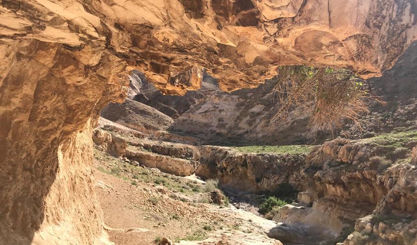 מדבר יהודה (צילום: עיריית מעלה אדומים)