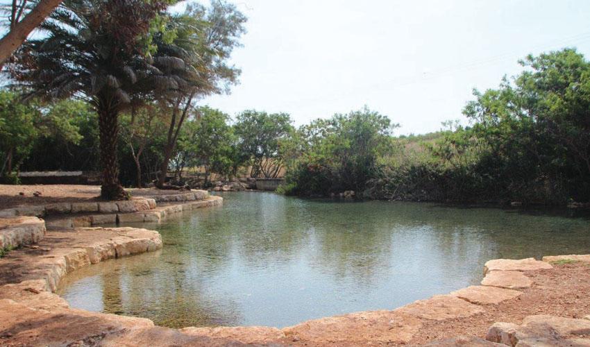 עמק המעיינות (צילום: דוברות עמק המעיינות)