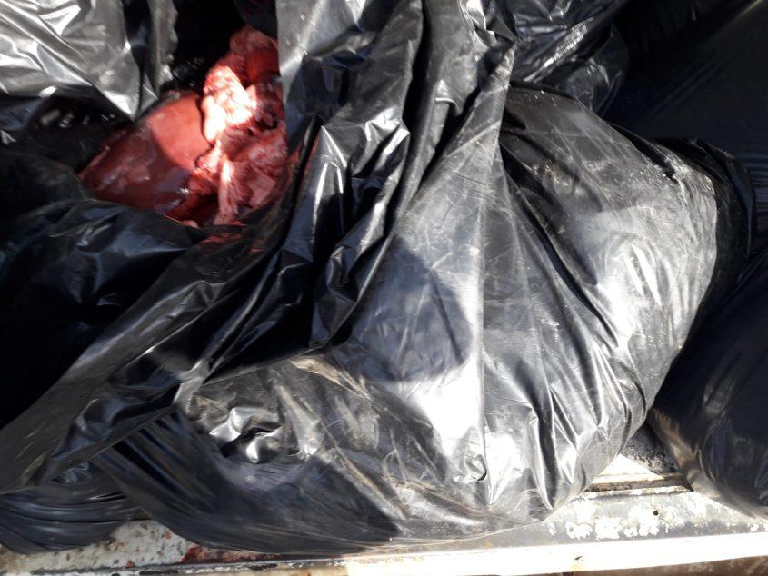 """תפיסה של כ-700 ק""""ג בשר שהוחזקו ללא תנאי תברואה (צילום: דוברות המשטרה)"""