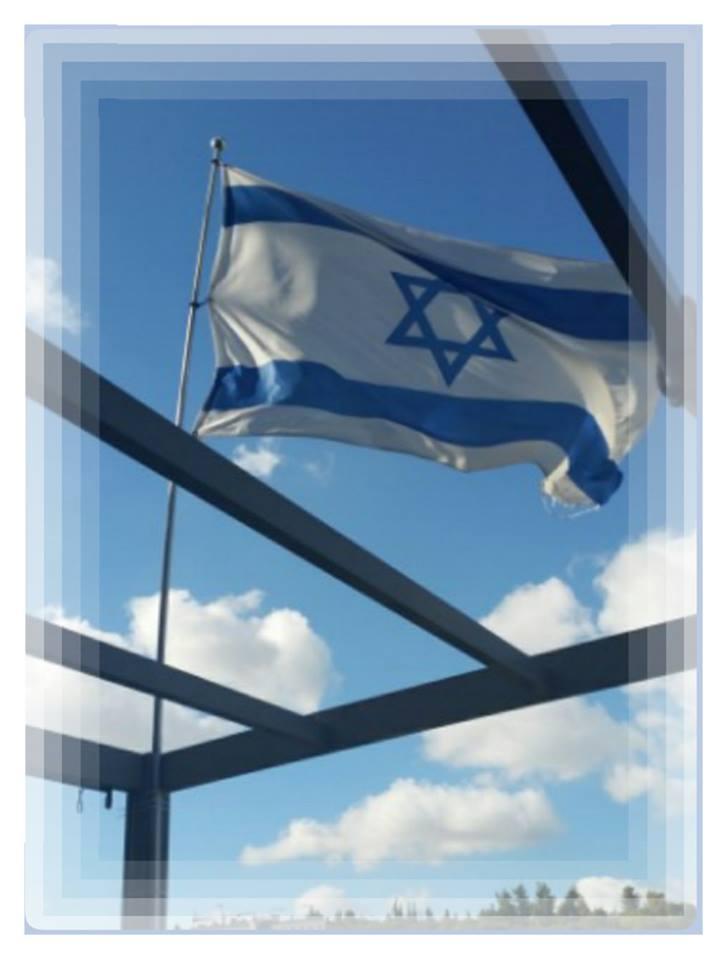 דגל ישראל (צילום: מיכל פישמן-רואה)