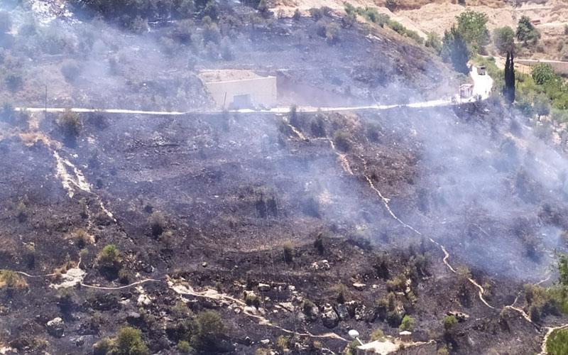 נזקי השריפה בליפתא (צילום: שלומי הלר)