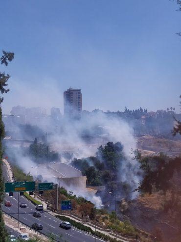 השריפה בליפתא (צילום: שלומי הלר)