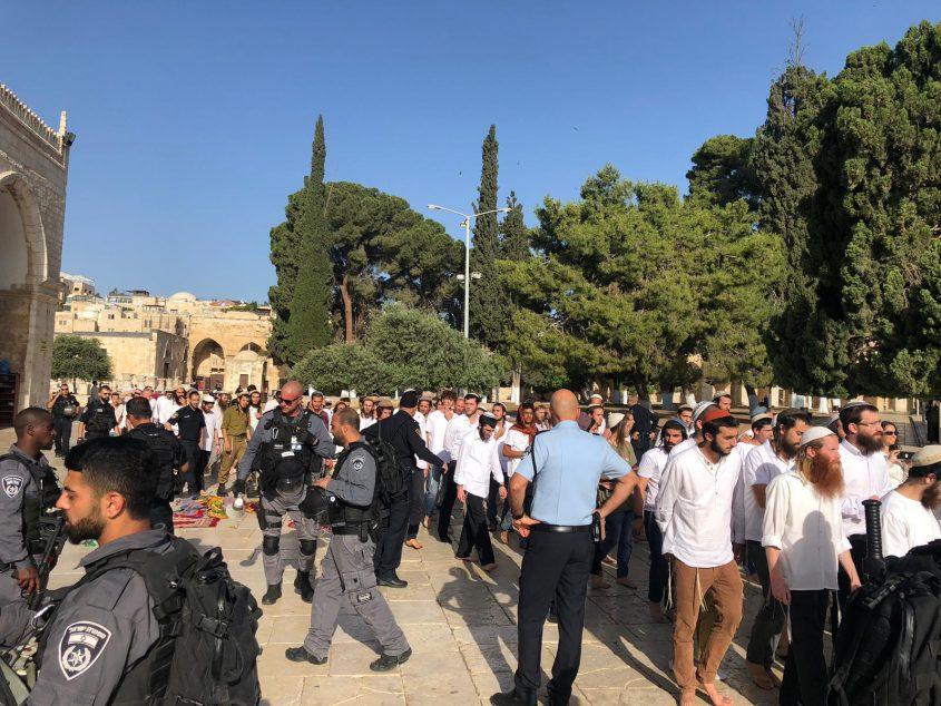 המתפללים היהודים בהר הבית (צילום: דוברות המשטרה)