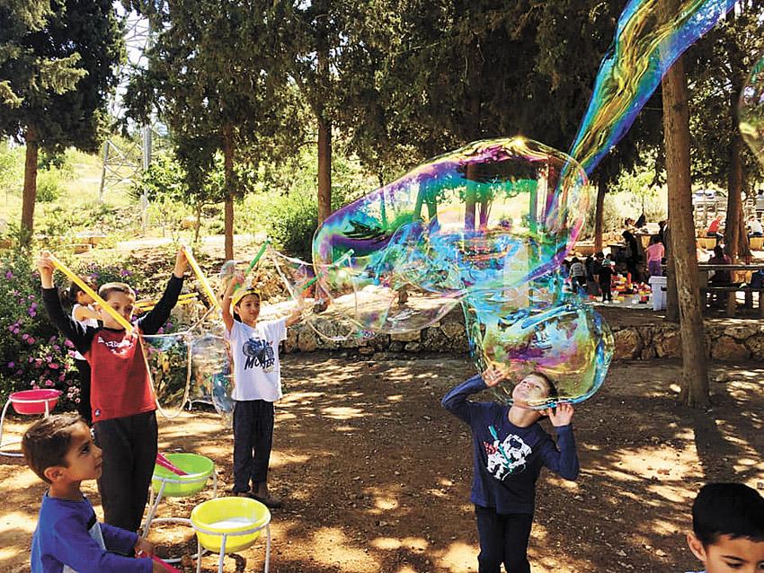 פעילויות קיץ לכל המשפחה (צילום: רומי בעבוע)