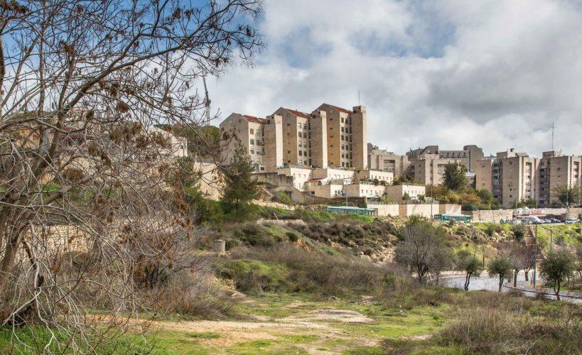 רמת דניה (צילום: אמיל סלמן)