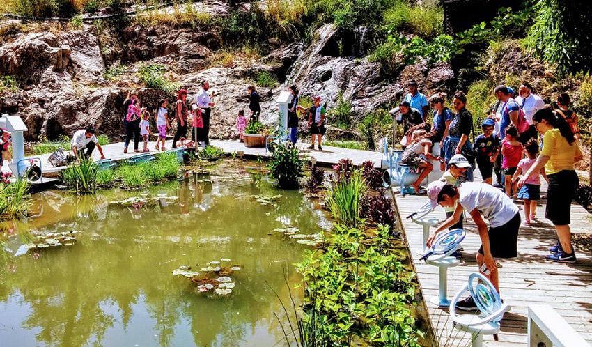 גן הבוטני (צילום: צביה אדלר)
