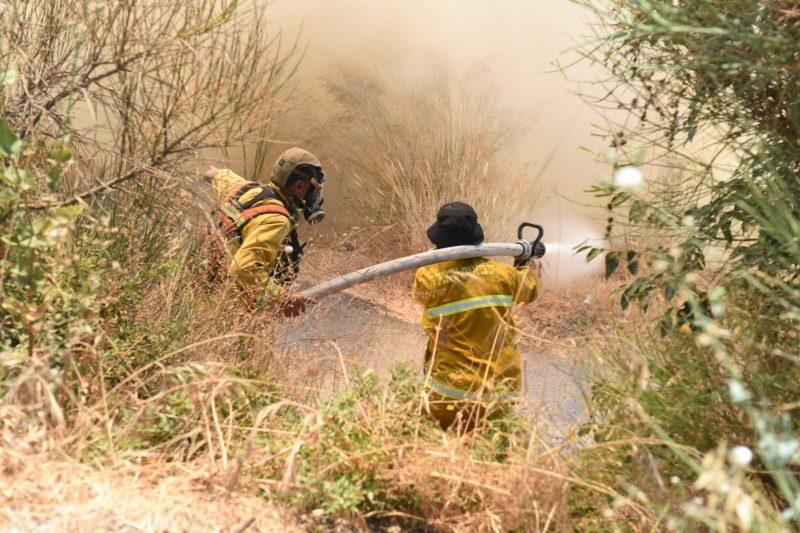 צוותי כיבוי בשריפת החורש בליפתא (צילום: תיעוד מבצעי כבאות והצלה לישראל)