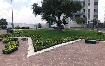 שדרוג הכיכרות בירושלים (צילום: באדיבות עיריית ירושלים)