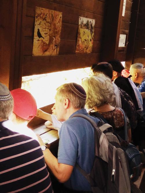 התחנה לחקר ציפורי ירושלים (צילום: איקא צ'יפמן)