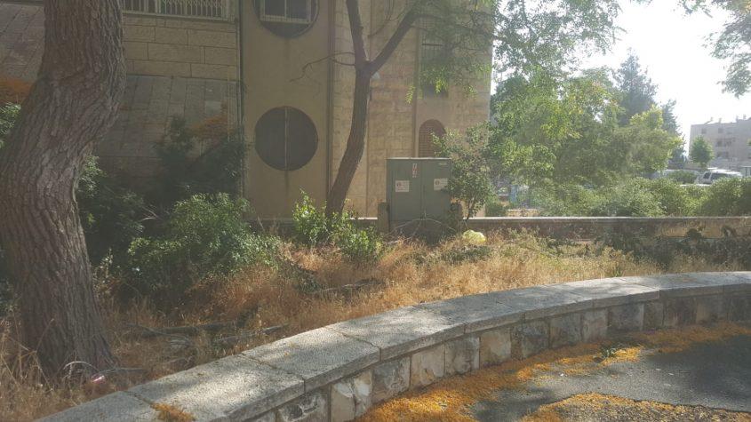 גן השעשועים ברחוב איילה, גילה (צילום: פרטי)