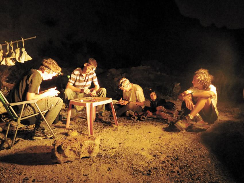 התחנה לחקר ציפורים, טיבוע לילה (צילום: מיכאלה צינקין)
