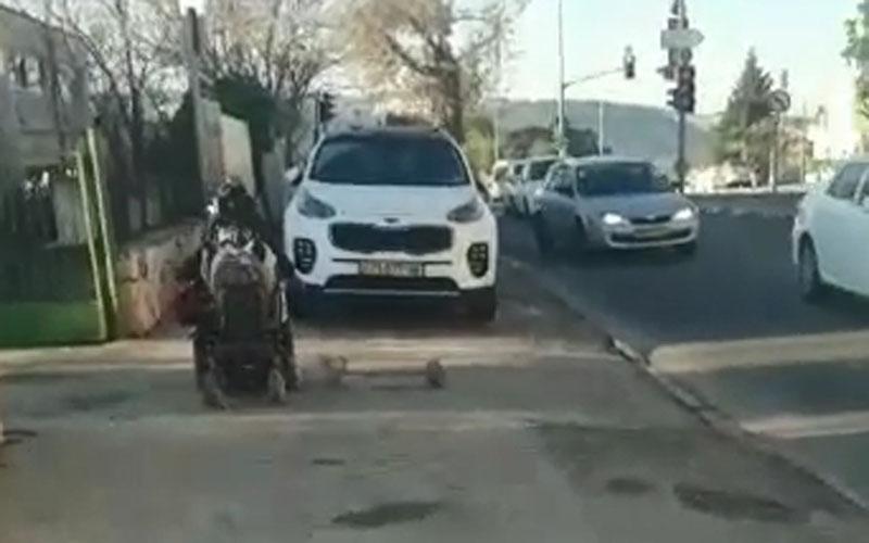 מתוך סרטון הווידאו בגוננים - צעיר נכה (צילום: פרטי)