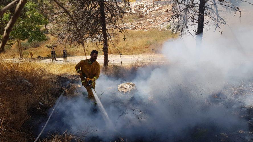 שריפה בוואדי בין רמות לרמת שלמה (צילום: דוברות כבאות והצלה ירושלים)