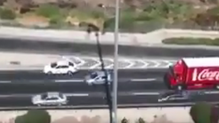 מתוך הסרטון בכביש בגין (צילום: אור ירוק)