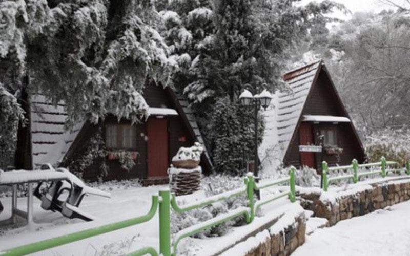 """כפר הנופש נוה אטי""""ב בשלג (צילום: באדיבות כפר הנופש נוה אטי""""ב)"""