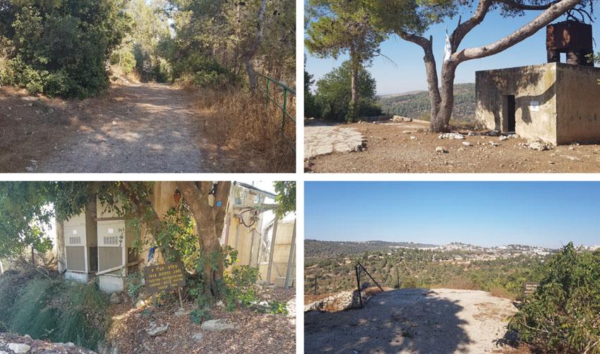 """מסלול הליכה קצר, תצפית לנוף מרהיב, אתר עתיקות ופיקניק: הטיול המומלץ לסופ""""ש באזור ירושלים"""