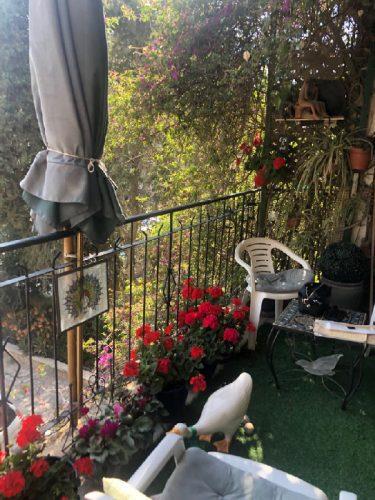 מרפסת הדירה ברחוב גלעדי, תלפיות (צילום: אניטה ויצמן)