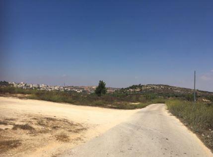 השטח שבו מתוכנן להיבנות בית העלמין סמוך למבשרת ציון (צילום: פרטי)