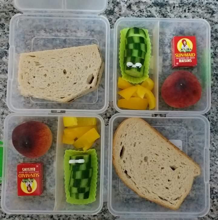 קופסת אוכל (צילום: בתאל פריאשטט)