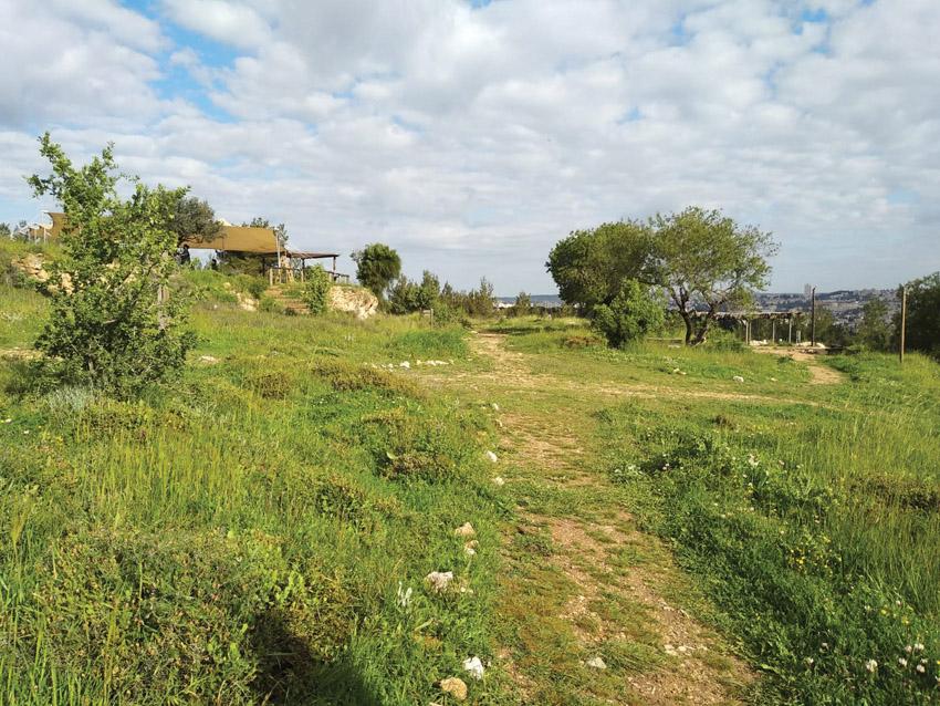 ח'רבת ארזה במורדות גילה (צילום: דוד שטרנברג)