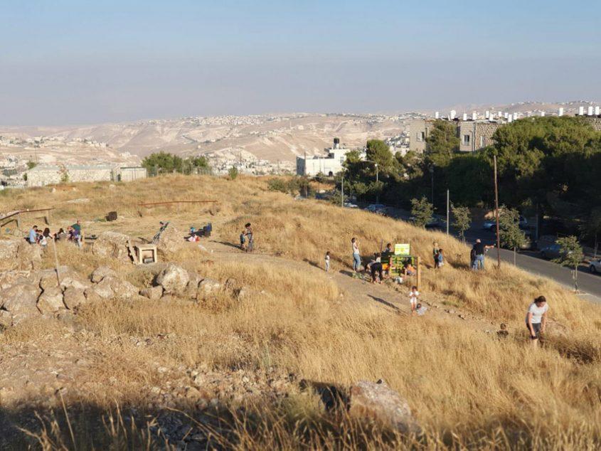 אתר הטבע העירוני 'מיצפה-טל' (צילום: גיל שכטר ורייצ'ל שטרסמן ברקוביץ')