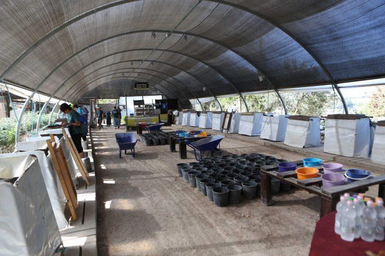 אתר הסינון בגן הלאומי עמק צורים (צילום: משה מנגן - ארכיון עיר דוד)