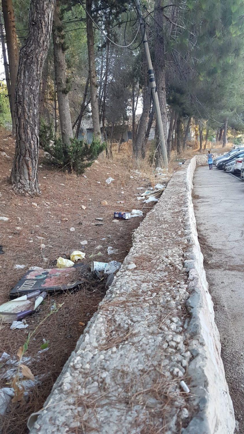 הלכלוך בשטח הפתוח ברחוב יהושע ייבין (צילומים: שרה יעקובזדה)