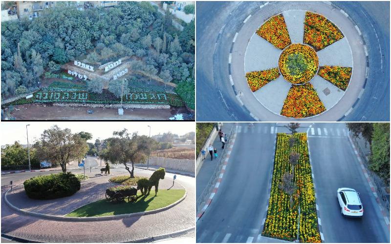 הפרחים שנשתלו ברחבי ירושלים (צילום: אלטרנטיבה 1)