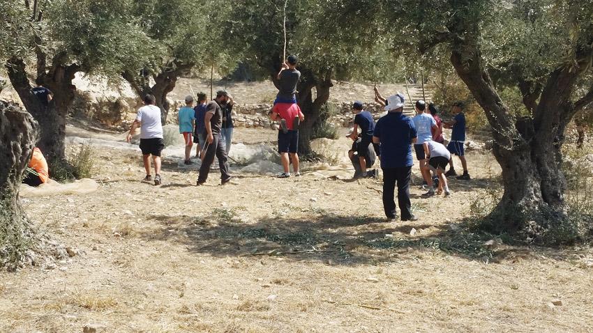 גן לאומי עמק צורים (צילום: ישי כהן, השומר החדש)