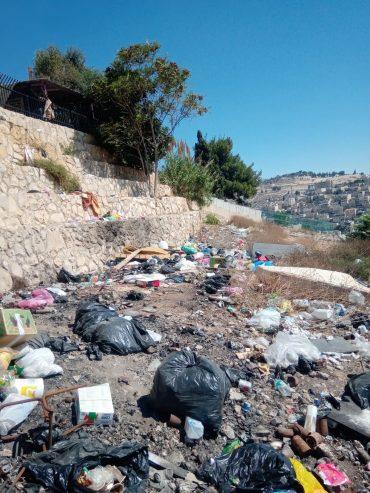 ניקוי בית העלמין סמבוסקי (צילום: דוברות עיריית ירושלים)