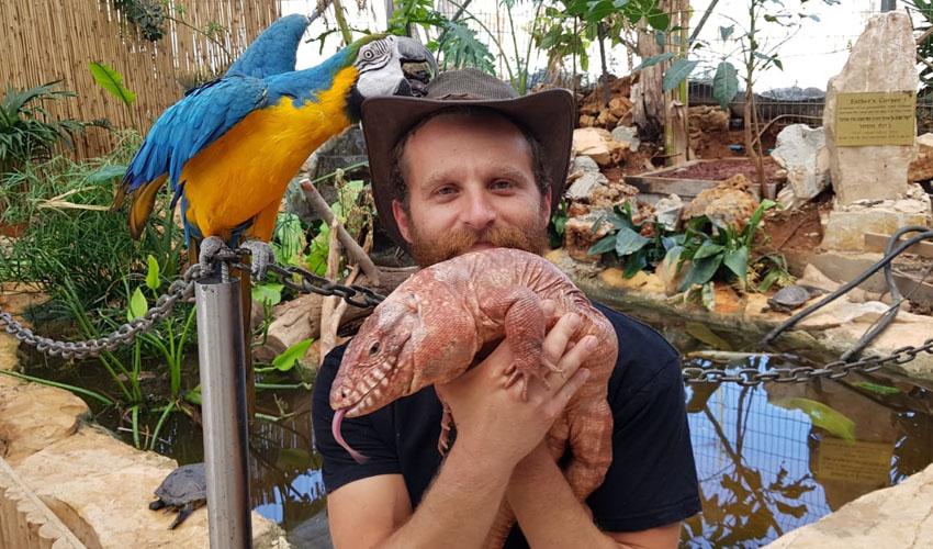 החיות של שלמה (צילום: אבי נועם)