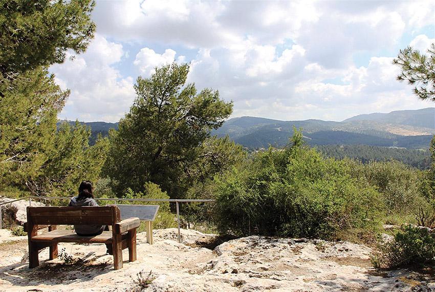 """יער צרעה, דרך הפסלים ביער צרעה (צילום: יעקב שקולניק, מתוך אתר eyarok.org.il באדיבות קק""""ל)"""