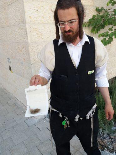 שמעון קליין הדברה (צילום: פרטי)