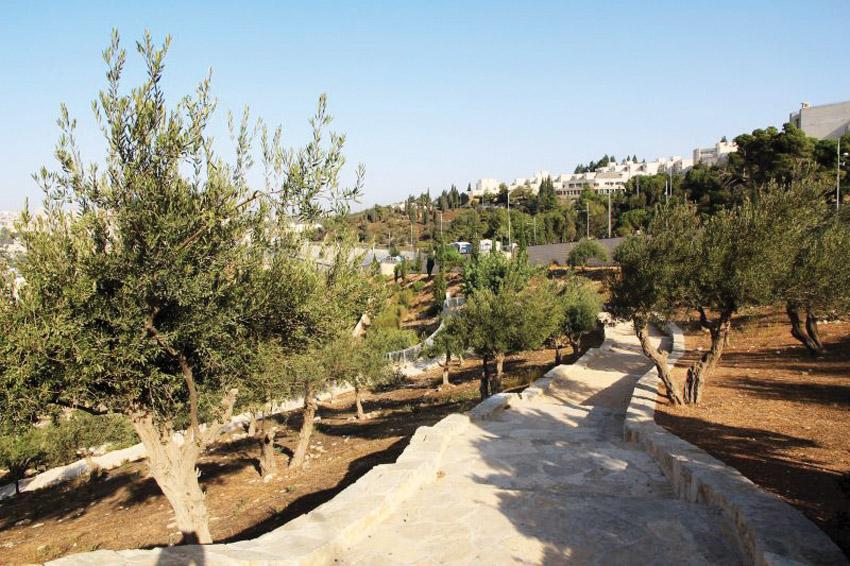 גן לאומי עמק צורים (צילום: יעקב שקולניק)
