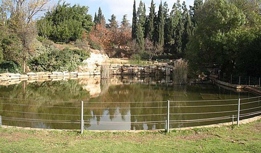 גן הוורדים (צילום: Adiel lo, ויקיפדיה)