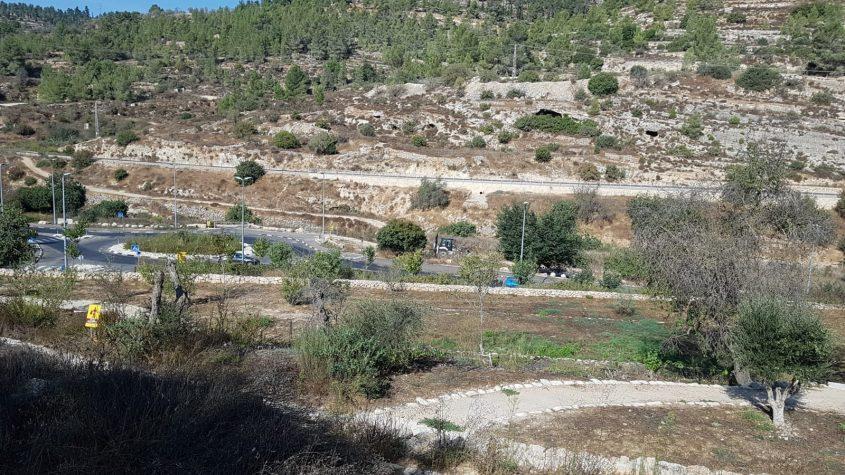 עין חניה (צילום: הראל בן שחר רשות הטבע והגנים)