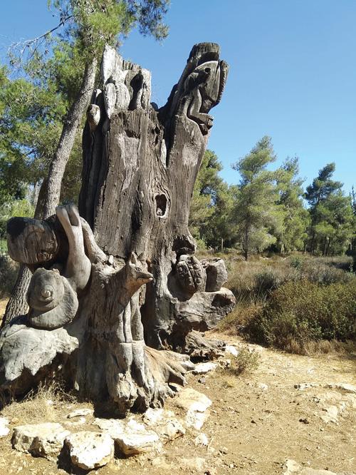 יער החמישה