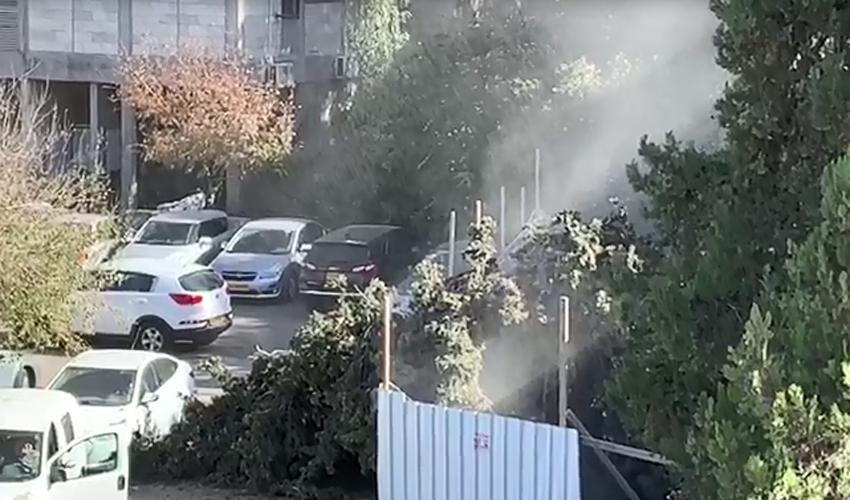 רחוב תרצה - היום -מתוך הווידאו. קריסת עץ באתר בנייה (צילום: פרטי)