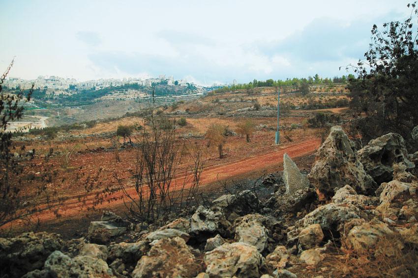 מצפה נפתוח (צילום: ארנון בוסאני)