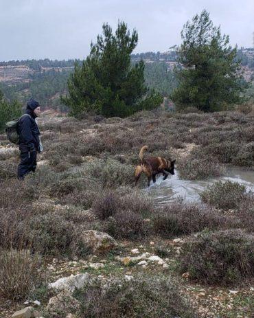 """צוות יכ""""ל בחיפושים אחר הנעדר סמוך לשכונת רמות (צילום: דוברות יכ""""ל)"""