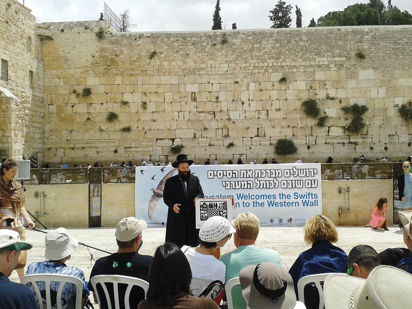 רב הכותל מברך על חזרת הסיסים לכותל המערבי (צילום: דוברות עיריית ירושלים)