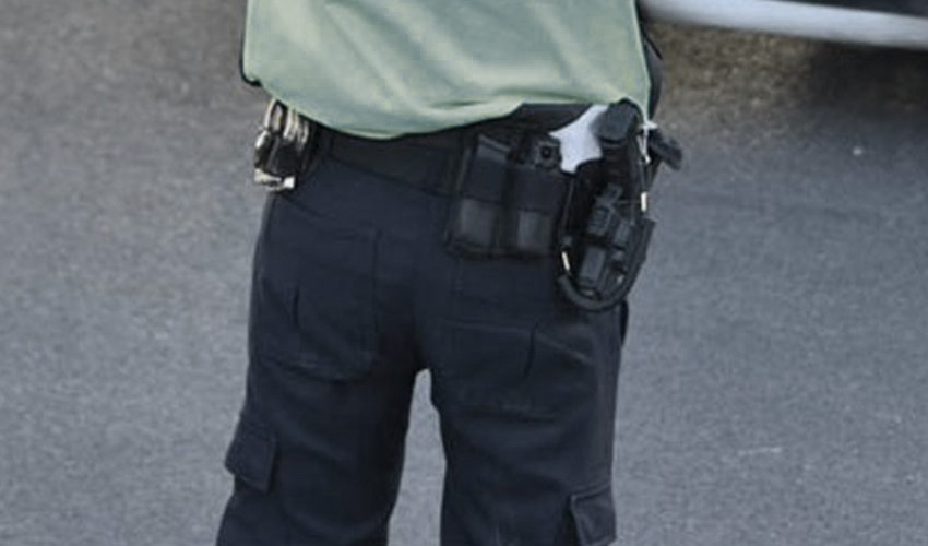 משטרה, שוטרים (צילום: דוברות המשטרה)