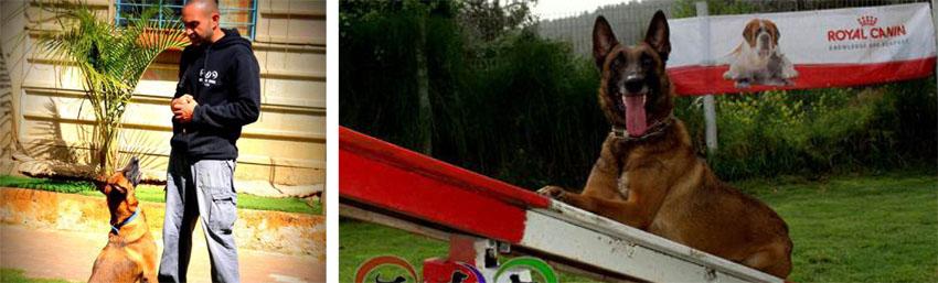 חוות כלבים עין כרם (צילום פרטי)