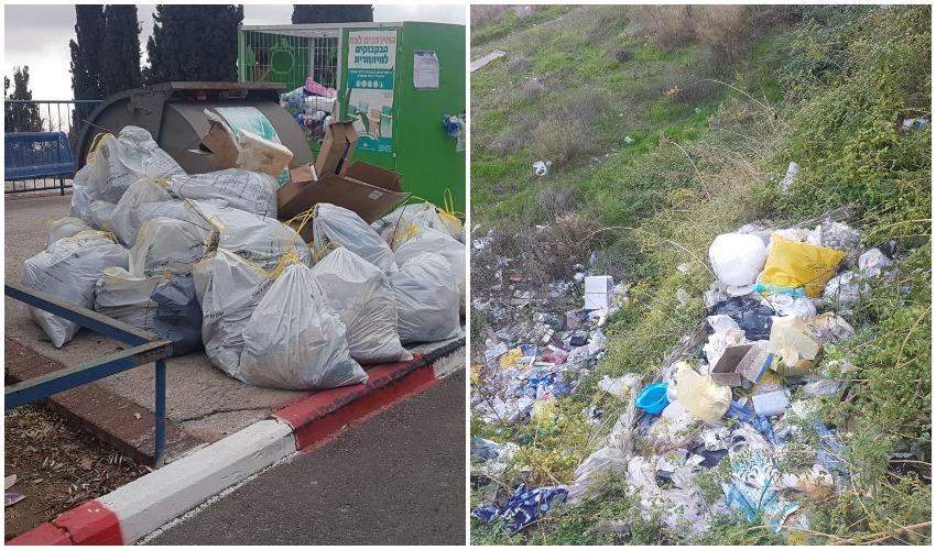 מפגע האשפה בפסגת זאב, שקיות האשפה שנאספה (צילומים: פרטי)