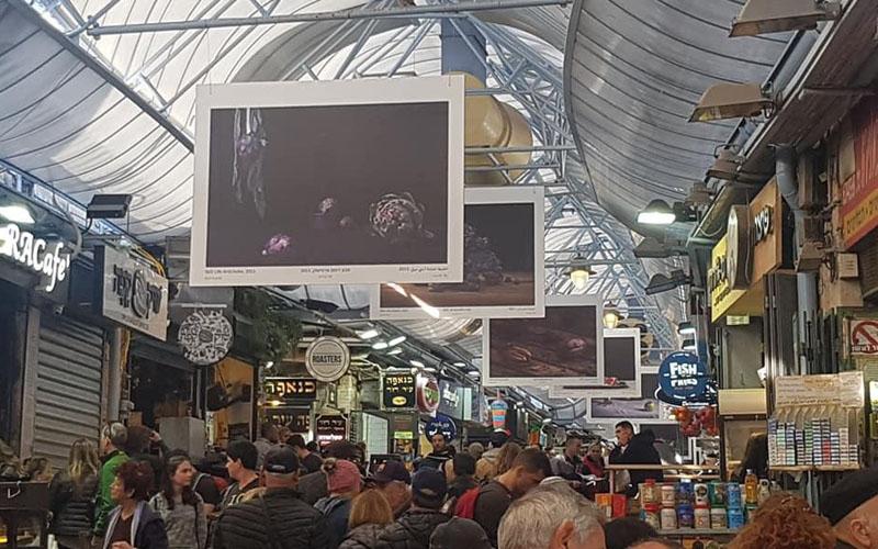 יצירות האמנות שנתלו בשוק מחנה יהודה (צילום: זאביק אבינר)
