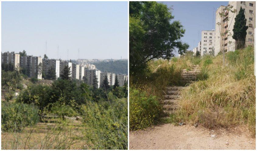 שביל הגישה המוזנח, ואדי האסבסטונים (צילומים: קבוצת הפייסבוק ירושלים בעיות פיתוח, גוגל מפות)