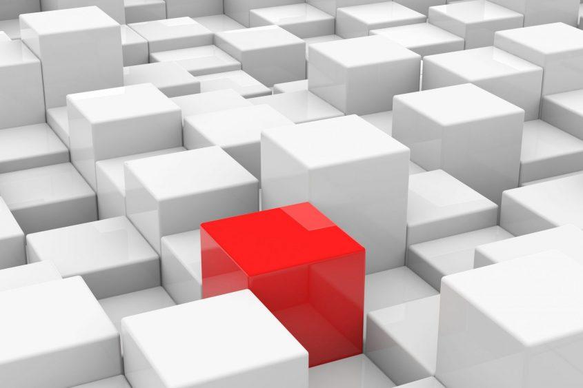 בניית אתרים לעסקים (צילום: 123rf.com)