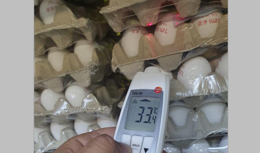 תבניות הביצים שנתפסו בפסגת זאב בחום של 33 מעלות (צילום: דוברות העירייה)