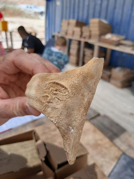 """ארנונה, טביעת חותם מוחזקת בידי הארכיאולוג נריה ספיר (צילום: ד""""ר אדם אקרמן)"""