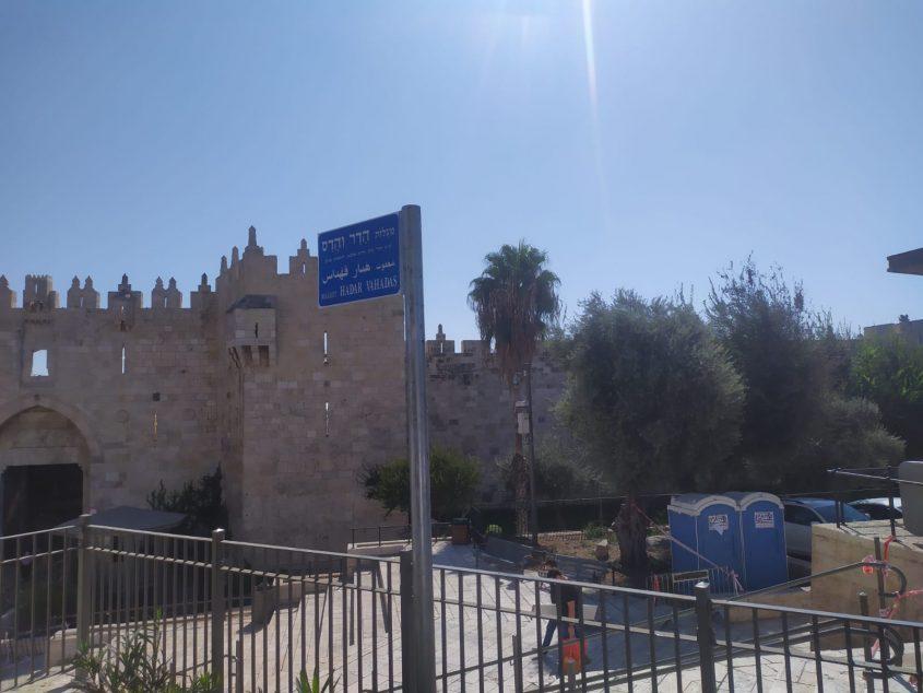 שלט הרחוב מעלות הדר והדס, סמוך לשער שכם (צילום: שלומי הלר)